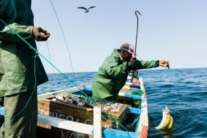 China 'stealing' Africa's fish